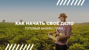 Бизнес проект под ключ - производство биогумуса